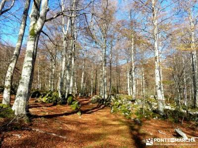 Parques Naturales Urbasa-Andía y Aralar - Nacedero del Urederra; excursiones montaña madrid